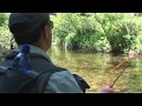The Mountain Fly Fishing Adv