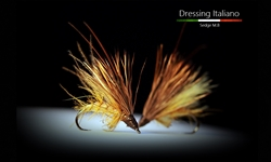 sedge emergente MB